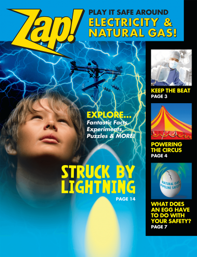 36215 Zap Play It Safe Around Electricity NG lg